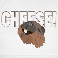 Design ~ CHEESE!