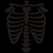 X-Ray rib-case