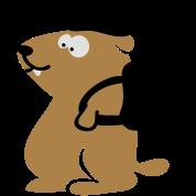 marmotta (c)