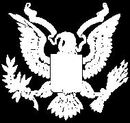 T-Shirt United States Great Seal<br />imprimer sur un tee shirt
