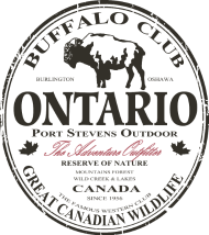T-Shirt Bison Buffalo Canada<br />imprimer sur un tee shirt