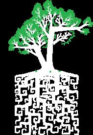 T-Shirt Square Root<br />imprimer sur un tee shirt