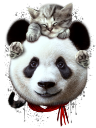 T-Shirt CAT ON PANDA<br />imprimer sur un tee shirt