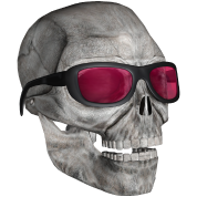 skull with sunglasses 3000