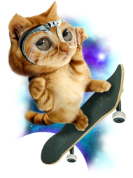 T-Shirt SKATEBOARD CAT<br />imprimer sur un tee shirt