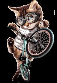 T-Shirt BMX CAT<br />imprimer sur un tee shirt