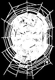 T-Shirt Spider Web<br />imprimer sur un tee shirt