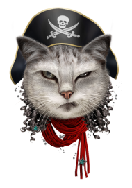 T-Shirt PIRATECAT<br />imprimer sur un tee shirt