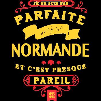 T-Shirt parfaite normandie<br />imprimer sur un tee shirt