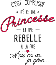 T-Shirt princesse et rebelle<br />imprimer sur un tee shirt