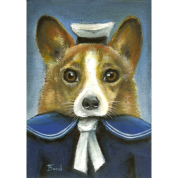 corgi the sailor