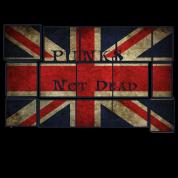 Punks not Dead England Fahne
