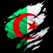 afrique algerie arabe
