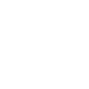 Hockey Goalie Mask (white)