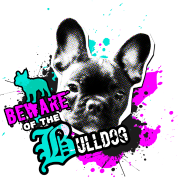 Bully, french bulldog - Attention danger
