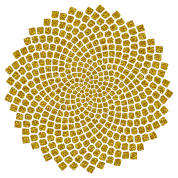 Sunflower Seed, digital gold, Fibonacci spiral, Golden cut, Golden angle