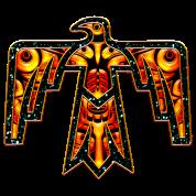 Thunderbird - native symbol power & strength T-Shirt