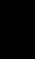 Motif Pingouin Squelette