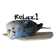 Welli Relax