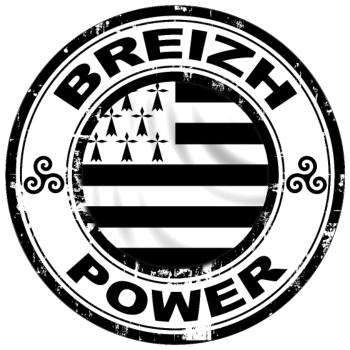 T-Shirt Breizh power 8<br />imprimer sur un tee shirt