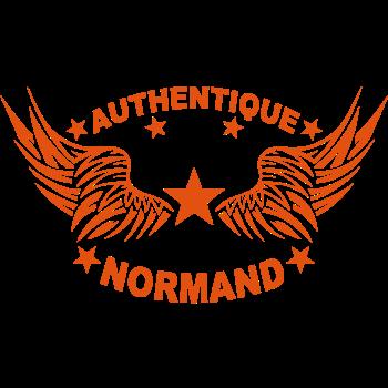 T-Shirt authentique normand<br />imprimer sur un tee shirt