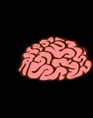 T-Shirt Zombies eat brains -you are safe<br />imprimer sur un tee shirt