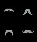 Motif Hiboux à moustache