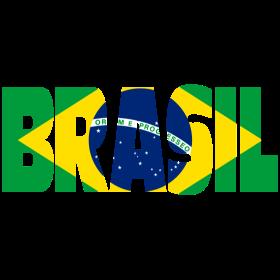 Brasilien mit Fahne auf dein T-Shirt