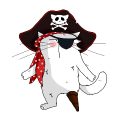 Motif Chat Pirate