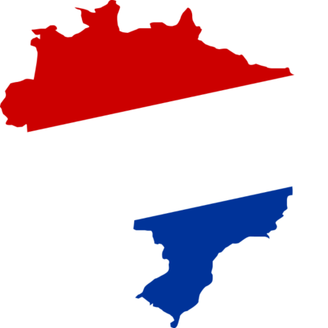 niederlande brasilien