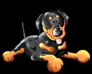 T-Shirt Rottweiler chien couche<br />imprimer sur un tee shirt