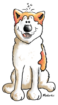 T-Shirt chien  Akita joyeux<br />imprimer sur un tee shirt