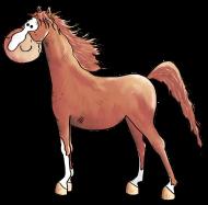 T-Shirt Niedliches Araber Pferd<br />imprimer sur un tee shirt