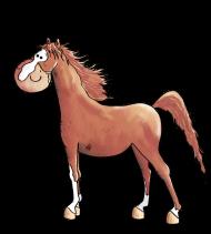 T-Shirt jolie Arabian Horse<br />imprimer sur un tee shirt