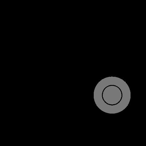 Russian roulette 84