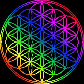 Blume des Lebens Regenbogenfarben auf dein T-Shirt