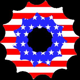 USA Ritzel auf dein T-Shirt