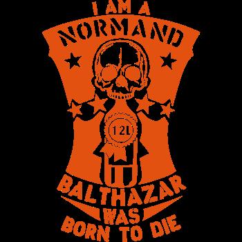 T-Shirt normand balthazar 12 litres bouteille<br />imprimer sur un tee shirt