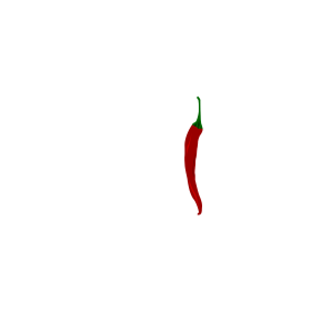 Mexico mit Chili auf dein T-Shirt